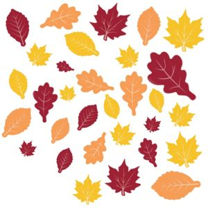 Fall Leaves Cutouts 30ct