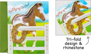 Giddy Up Invitations 8ct