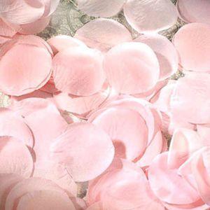 Pink Rose Petals 300ct