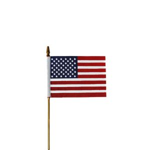 Small American Flag