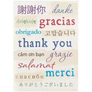 A World of Thanks Thank You Cards 8ct