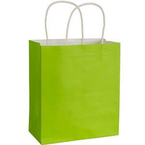 Kiwi Kraft Bag