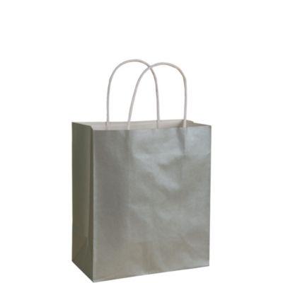 Silver Kraft Bag
