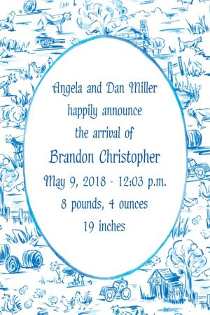 Custom Old MacDonald Toile Birth Announcements
