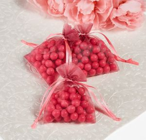 Bright Pink Organza Favor Bags