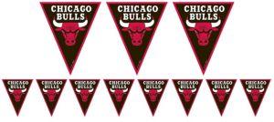 Chicago Bulls Pennant Banner