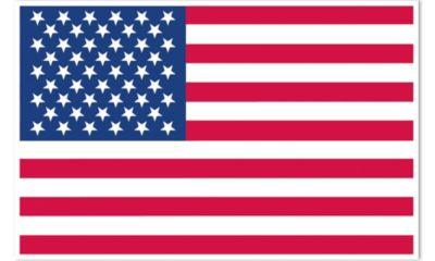 Vinyl American Flag Decoration