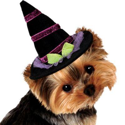 Sparkle Dog Witch Hat