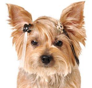 Glitter Skull Dog Hair Extensions 3ct