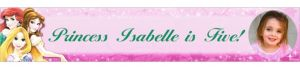 Custom Disney Princess Sparkle Photo Banner 6ft