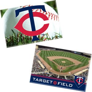 Minnesota Twins Magnets 2ct