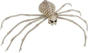 Poseable Skeleton Spider