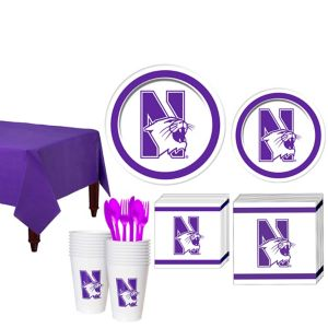 Northwestern Wildcats Basic Fan Kit