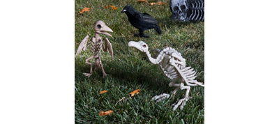 Pet Cemetery Vulture Decorating Kit