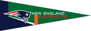 Small New England Patriots Pennant Flag