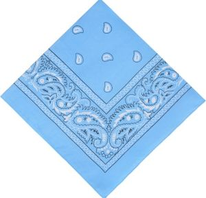Light Blue Bandana