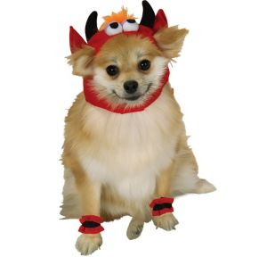Lil' Devil Dog Costume