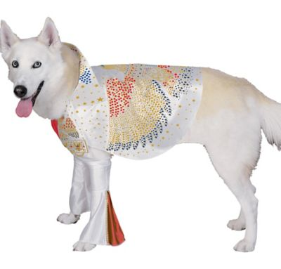 Rock n Roll Dog Costume