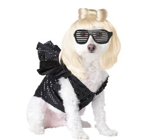 Pup-A-Razzi Pop Sensation Dog Costume