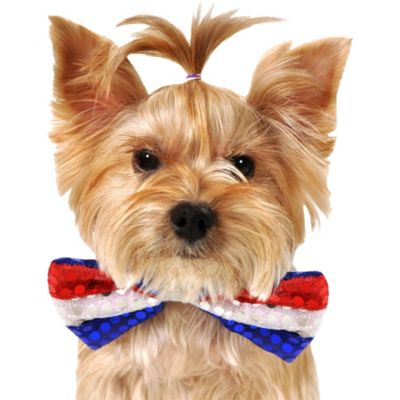 Red, White & Blue Sequin Dog Bow Tie