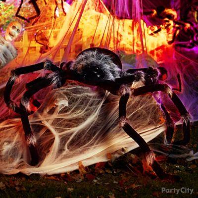 Terrifying Spider Idea