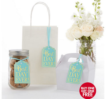 Robin's Egg Blue Best Day Ever Favor Tags 25ct