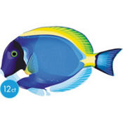 Surgeonfish Cutout 14 3/4in 12ct
