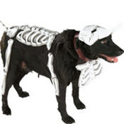 Corpse Bride Dog Costume