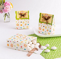 Owl Favor Boxes 12ct