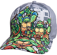 Gray Teenage Mutant Ninja Turtles Baseball Hat