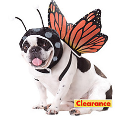 Animal Planet Butterfly Dog Costume