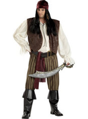 Adult Rogue Pirate Costume Plus Size