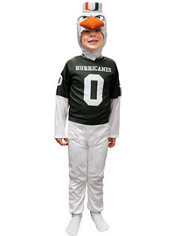 Child Miami Hurricanes Mascot Costume