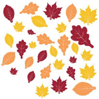 Fall Leaves Assorted Value Pack Cutouts 30ct