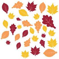 Fall Leaves Cutouts 30ct