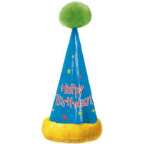 Large Birthday Party Hat