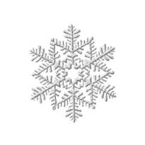 Silver Glitter Snowflake Hanging Decoration 6in