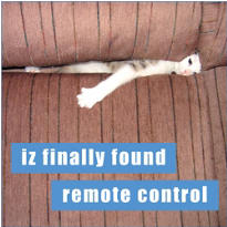 Found Remote Lolcats Magnet