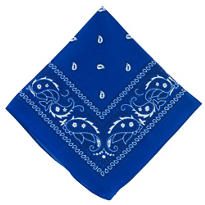 Blue Bandana 20in