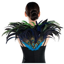 Fan Feather Peacock Wings