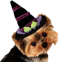 Sparkle Dog Witch Hat