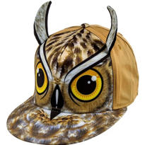 Owl Baseball Hat