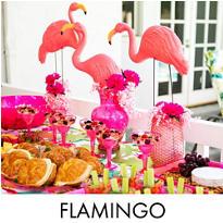 Flamingo Fun Party Supplies