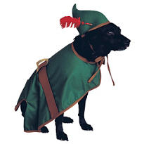 Robin Hood Dog Costume