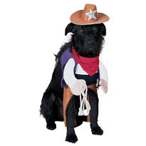 Sheriff Dog Costume