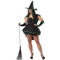 Adult Sexy Wicked Witch Costume Plus Size