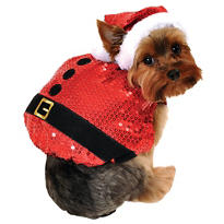 Sequin Santa Dog Costume