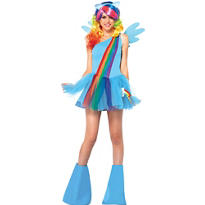 Adult Sassy Rainbow Dash Costume - My Little Pony