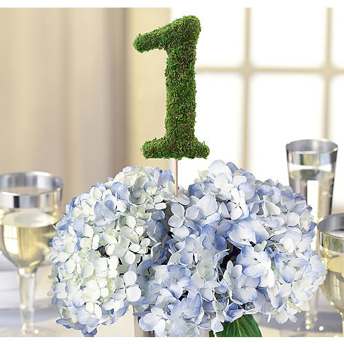 Wedding decorations wedding decor party city moss table number 1 greentooth Image collections