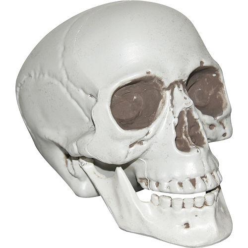 Halloween Skeleton.Halloween Skeletons Skulls Skeleton Decorations Party City